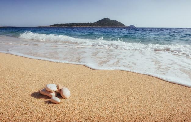 Fantastyczne widoki na wybrzeże z żółtym piaskiem i błękitną wodą.