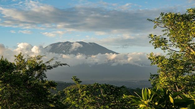 Fantastyczny widok na zielone drzewa z wulkanem i pochmurnym niebem na tle pień fotografia