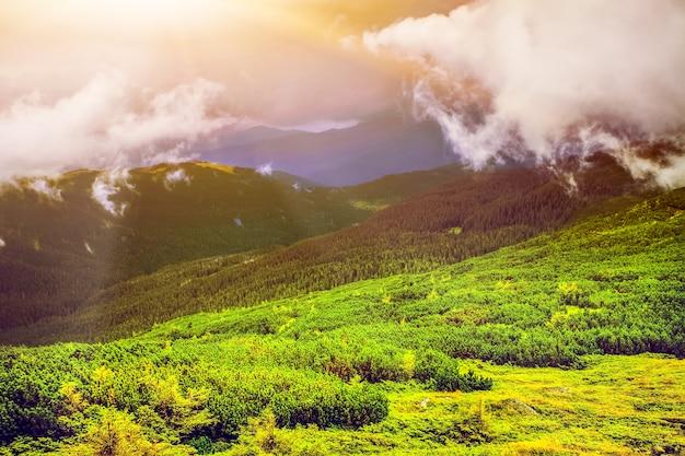 Fantastyczny zachód słońca w górach ukrainy