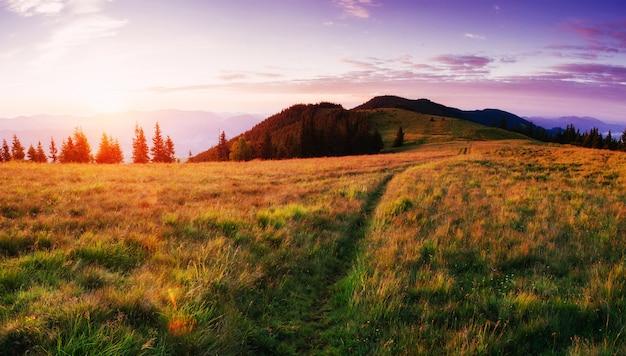 Fantastyczny zachód słońca w górach ukrainy.