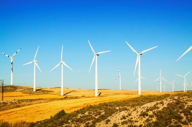 Farma wiatrowa w pola uprawne w lecie