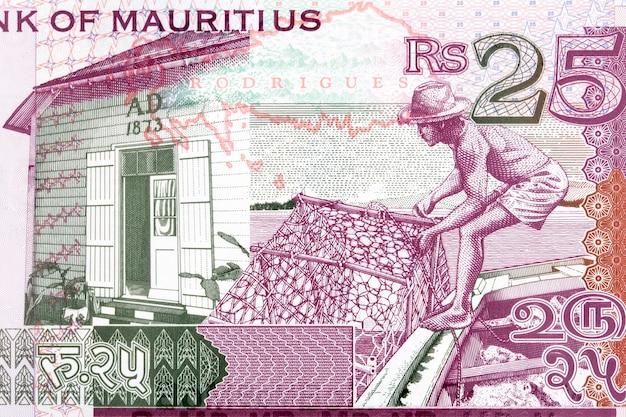 Fasada domu i robotnik z mauritiusa za pieniądze