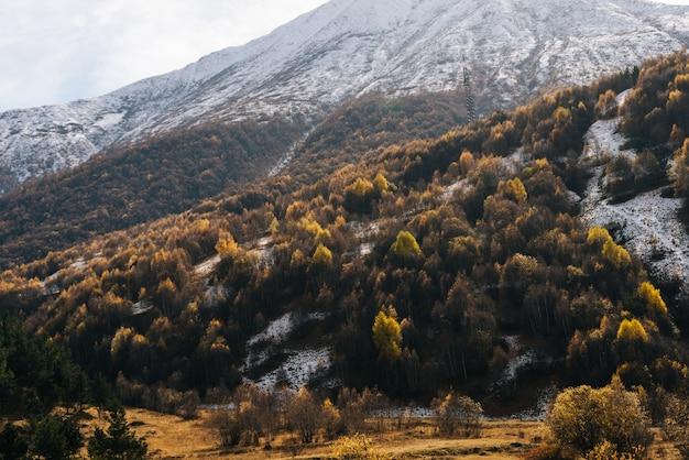 Fascynująca magiczna przyroda, wysokie góry i wzgórza pokryte białym śniegiem, wiele drzew