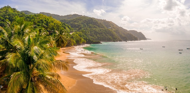 Fascynująca sceneria morskiego krajobrazu z bujną przyrodą w ciągu dnia