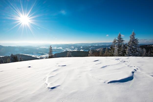 Fascynujący słoneczny krajobraz zimowego lasu położonego na zaśnieżonym zboczu w słoneczny mroźny zimowy dzień.