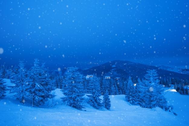 Fascynujący zimny krajobraz zaśnieżonego morza, ponurego nieba lasu i zamarzniętego morza. koncepcja pięknego północnego kraju