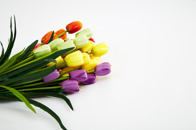 Festival backgrounds fałszywe kolorowe tulipany