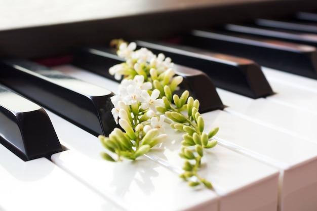 Fiddle wood kwiat na klawiszu fortepianu