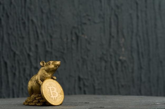 Figurka bożonarodzeniowego szczura symbol nowego roku 2020 z monetą złote bitcoiny