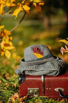 Filcowy kapelusz i dzianinowy szalik na brązowej walizce vintage w jesiennym lesie