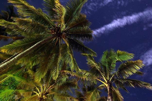 Filipiny noc na plaży wyspy palawan