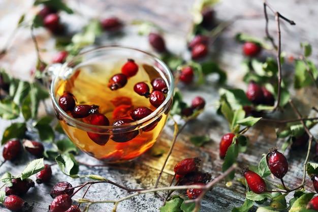 Filiżanka herbaty z owocami róży. gałęzie i jagody dzikiej róży. jesienny napój leczniczy. selektywne ustawianie ostrości.