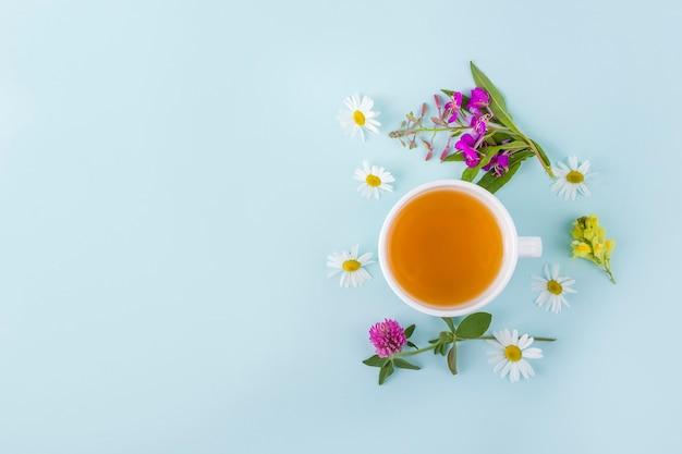 Filiżanka herbaty ziołowej z kwiatów rumianku na niebieskim tle. organiczna, kwiatowa, zielona herbata azjatycka. ziołolecznictwo przy chorobach sezonowych oraz leczeniu przeziębień, grypy, upałów. miejsce na tekst.
