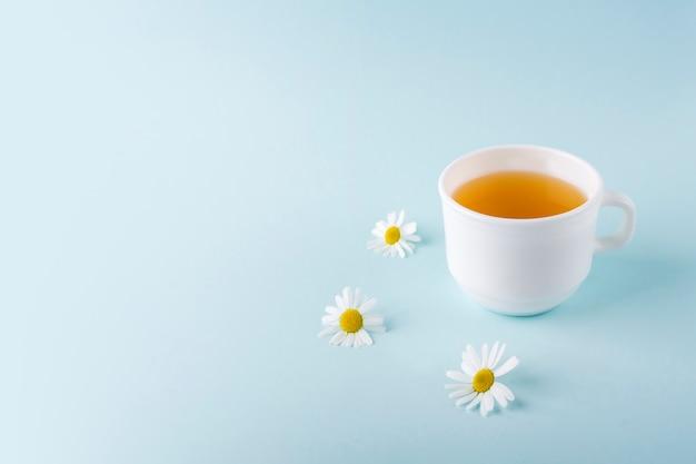 Filiżanka herbaty ziołowej z kwiatów rumianku na niebieskim tle, z miejsca kopiowania tekstu. organiczna, kwiatowa, zielona herbata azjatycka. ziołolecznictwo przy chorobach sezonowych oraz leczeniu przeziębień, grypy, upałów.
