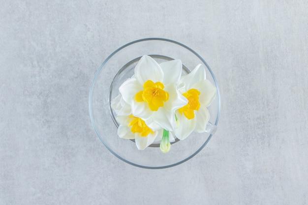 Filiżanka kwiatu na spodku, na białym stole.