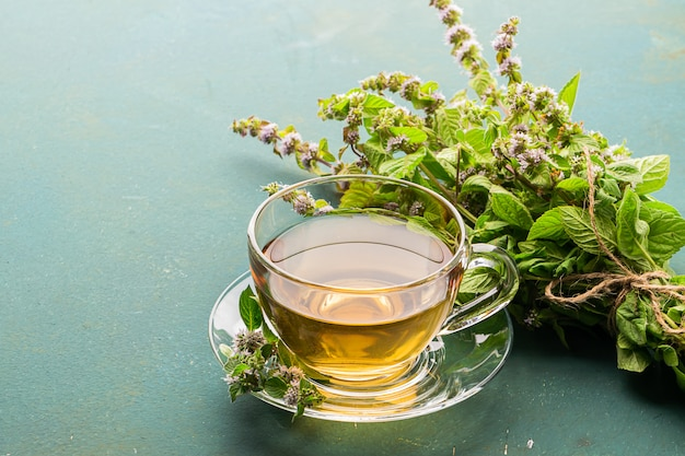 Filiżanka napoju herbacianego ze świeżymi liśćmi mięty melisowej
