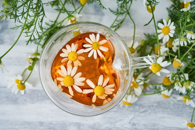 Filiżanka naturalnej herbaty ziołowej, z kwiatami rumianku na szaro