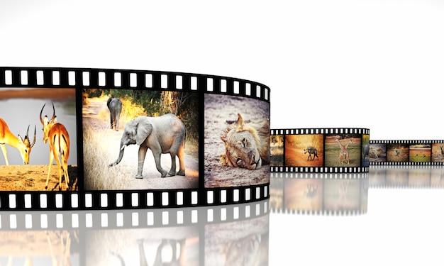 Film z afryki