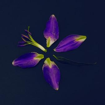 Fioletowe lilie. czarna sztuka mody. minimalne szczegóły