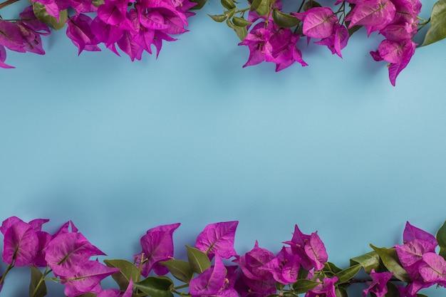 Fioletowy kwiat z miejsca na kopię na niebieskiej powierzchni