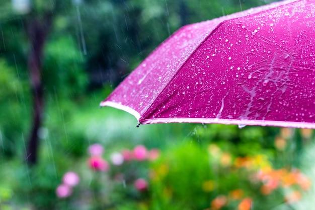 Fioletowy parasol pod letnim deszczem na tle zielonego ogrodu