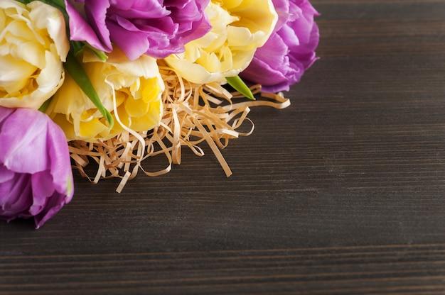 Fioletowy żółty tulipanowy kwiat