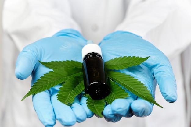 Fiolka z olejem konopnym cbd i liściem konopi w rękach lekarza w gumowych niebieskich rękawiczkach i białym fartuchu laboratoryjnym. koncepcja produktu medycyny alternatywnej lub farmacji. medyczna roślina marihuany