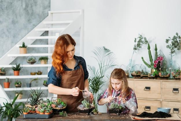 Firma zajmująca się ogrodnictwem domowym. matka i córka sadzenia i uprawy sukulentów na sprzedaż.