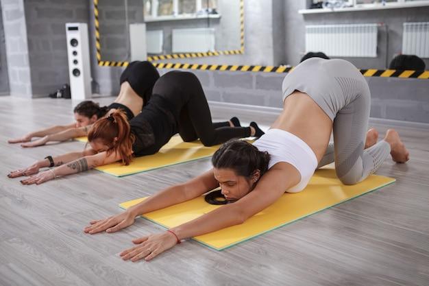 Fit kobiety ćwiczące razem na zajęciach jogi grupowej