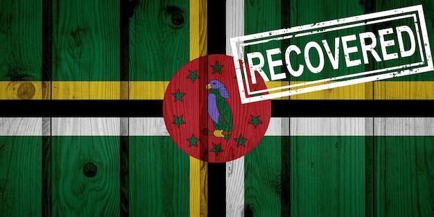 Flaga dominiki, która przeżyła lub wyzdrowiała z infekcji epidemii koronawirusa lub koronawirusa. flaga grunge z pieczęcią odzyskane