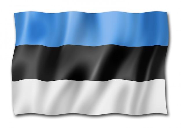 Flaga estonii na białym tle