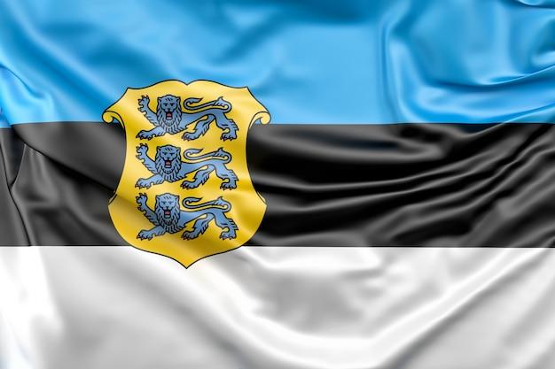 Flaga estonii z herbem