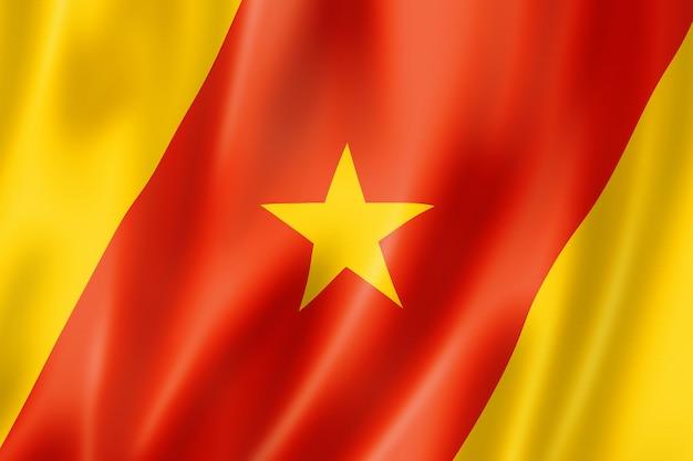 Flaga etniczna ludzi amhara