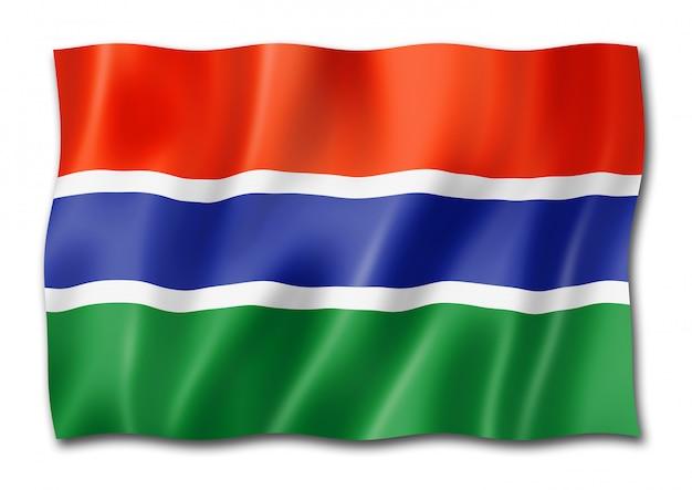 Flaga gambii na białym tle