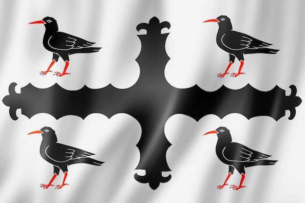 Flaga hrabstwa flintshire, wielka brytania