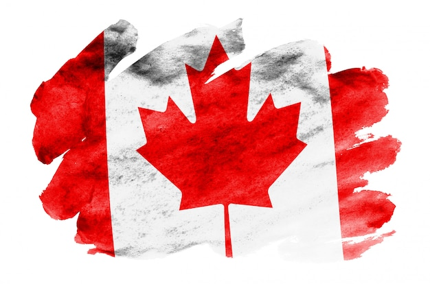 Flaga kanady jest przedstawiona w płynnym stylu akwareli na białym tle
