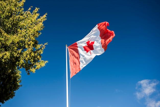 Flaga kanady na błękitne niebo