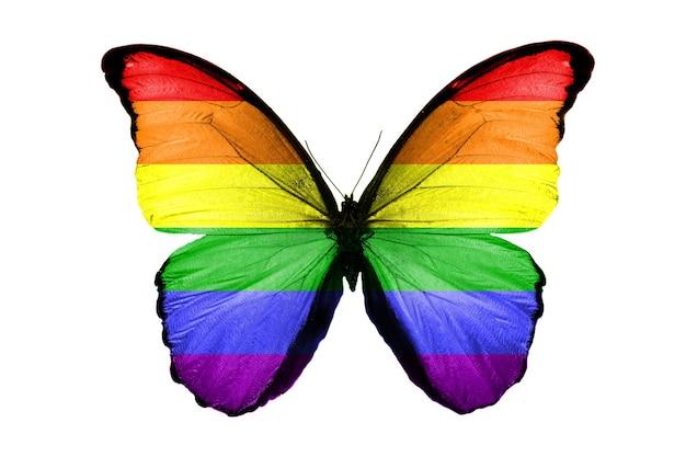 Flaga lgbt na skrzydłach motyla. na białym tle