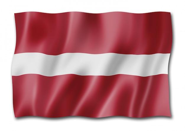 Flaga łotwy na białym tle