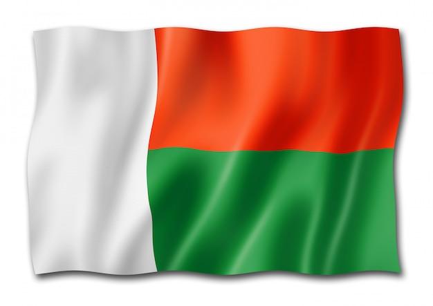 Flaga madagaskaru na białym tle