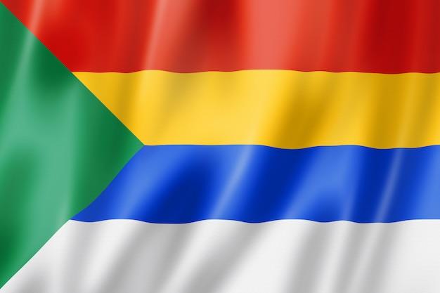 Flaga narodowa druzów
