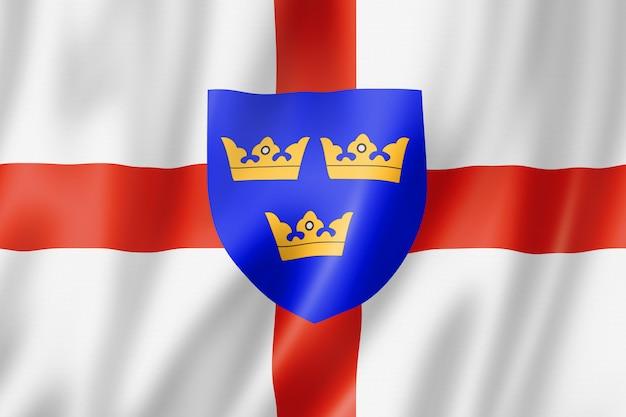 Flaga regionu anglii wschodniej, wielka brytania