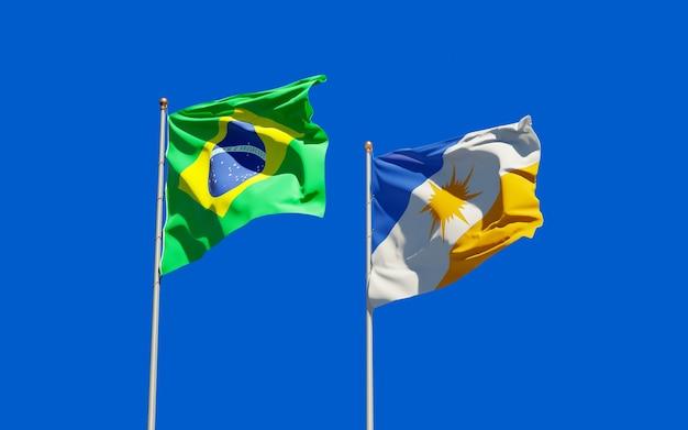 Flaga stanu brazylia tocantins. grafika 3d