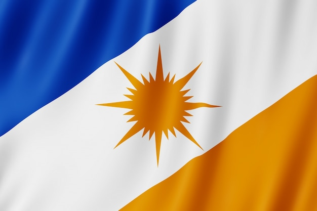 Flaga stanu tocantins w brazylii