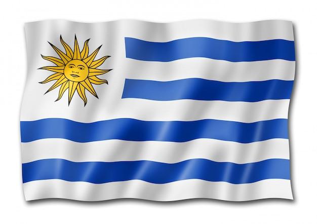 Flaga urugwaju na białym tle