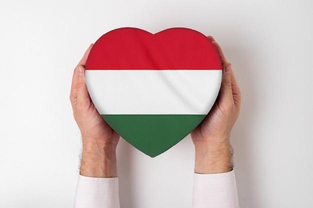 Flaga węgier na pudełku w kształcie serca w męskich rękach.