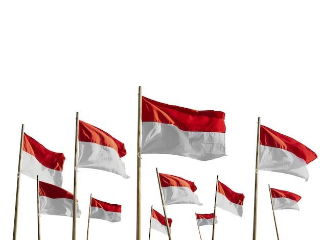 Flagi indonezji na białym tle nad białym