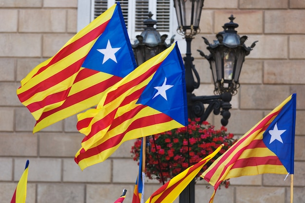 Flagi katalonii
