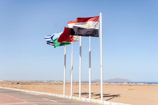Flagi państw na tle gór, pustyni i nieba.