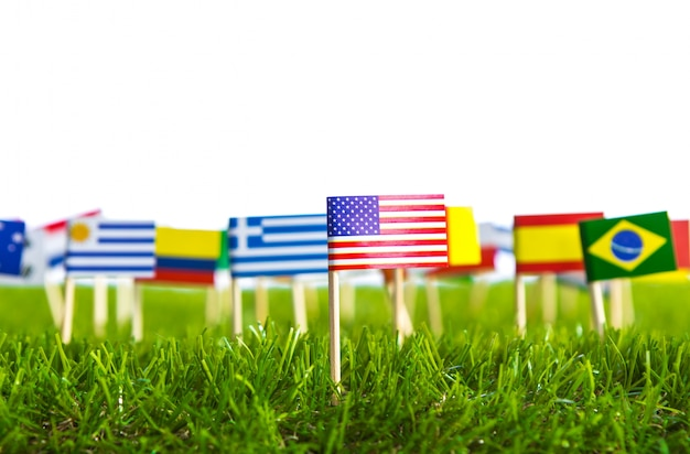 Flagi różnych krajów przebite na trawniku